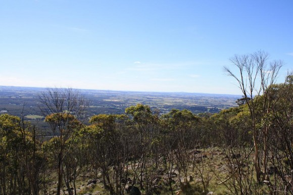 View from the Mt. Macedon (Woodend side) climb.