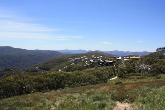 View from Mt. Buller.