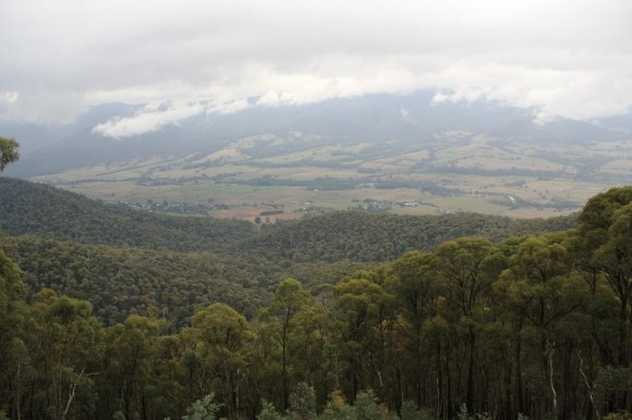 View from the Tawonga Gap.