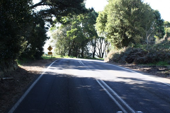 End of the Skenes Creek Road climb.