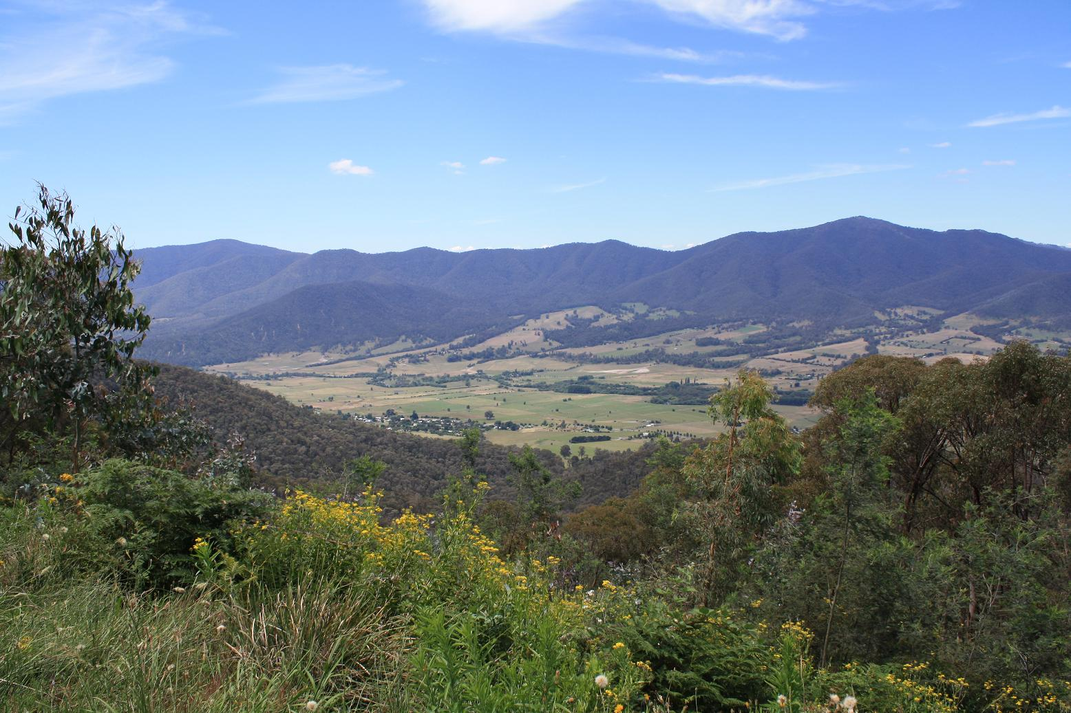 View from the Tawonga Gap