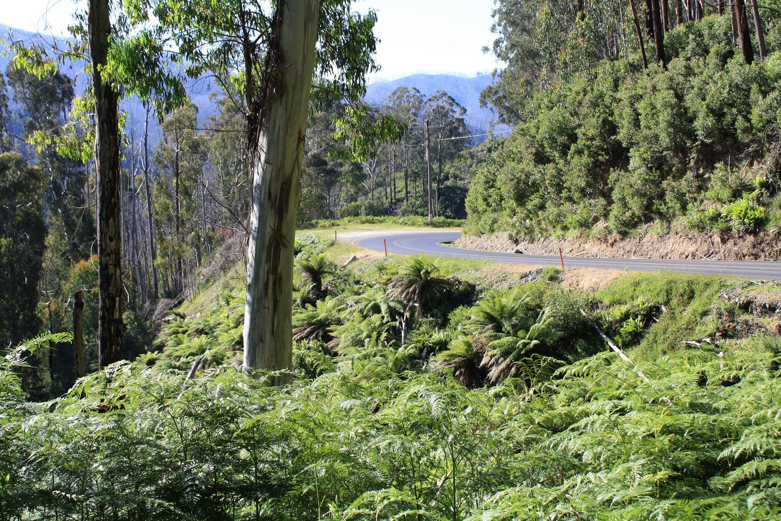 Falls Creek climb