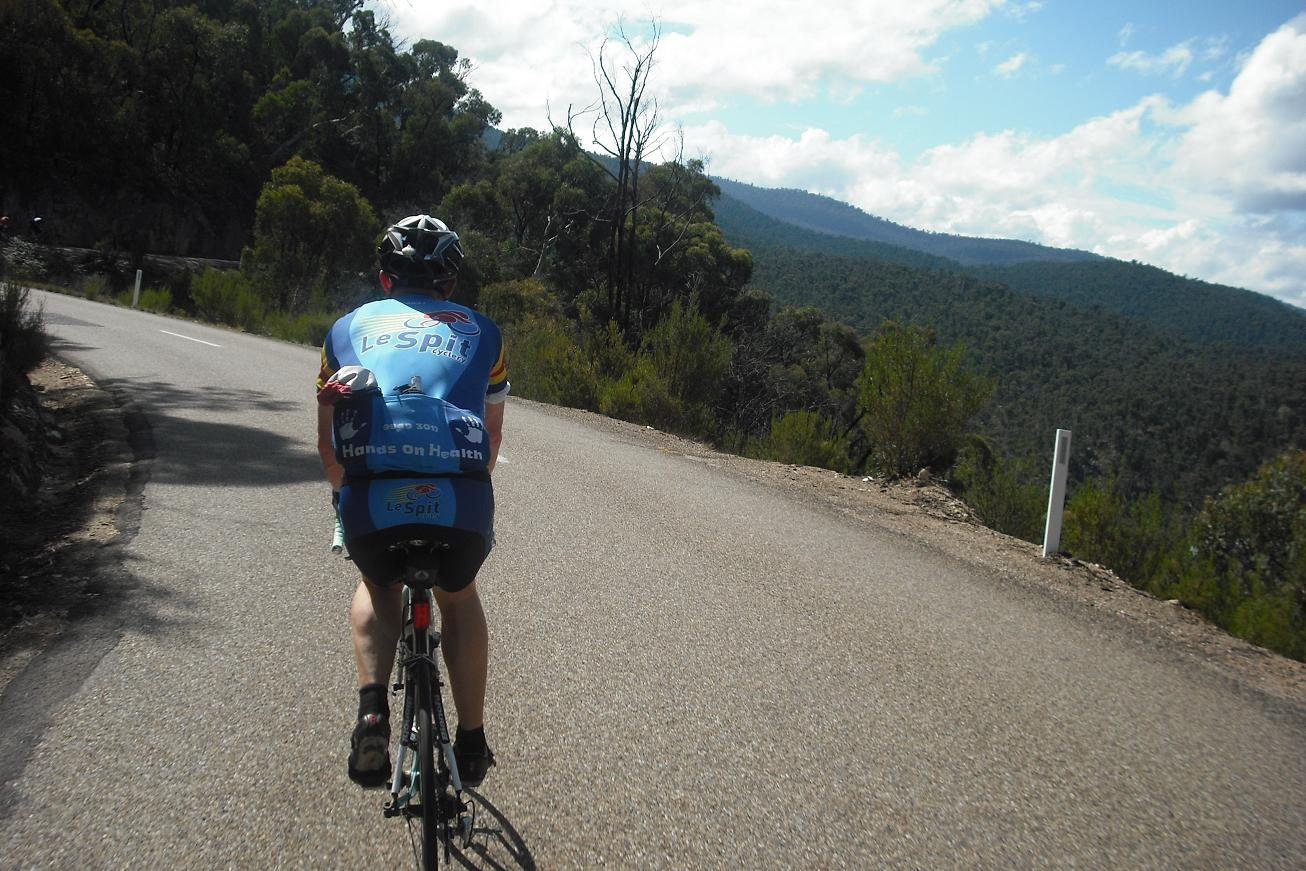 Between Omeo and Anglers Rest