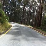 Mt. Buller ride (11.2.12) 051