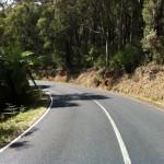 Reefton Spur ride (18.2.12) 015
