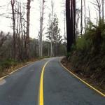 Reefton Spur ride (18.2.12) 058