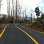 Reefton Spur ride (18.2.12) 079