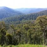 Reefton Spur ride (18.2.12) 095