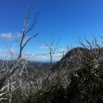 Views from the Mt. Hotham false-flat.