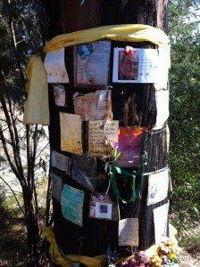 Black Saturday Bushfire memorial in Strathewen