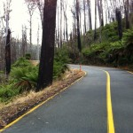 Return to the Reefton Spur (of climbs, cold and KOMs)
