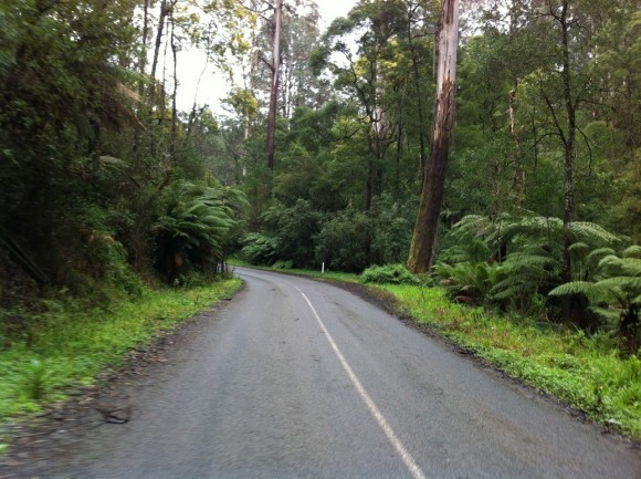 Quiet roads, lush scenery, not raining ... what more could you want from a winter's ride?