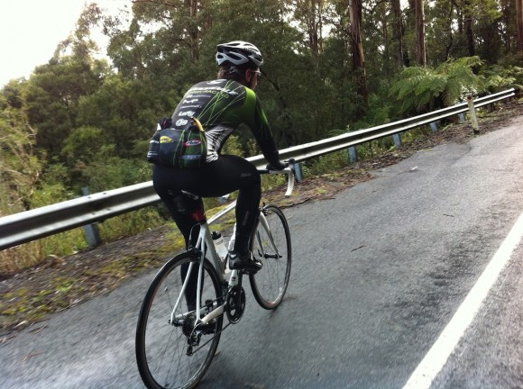 Brendan on the second half of the Mt. Donna Buang climb.