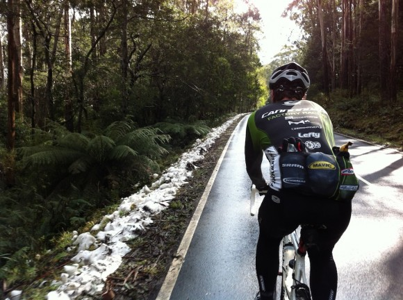 There wasn't much snow atop Mt. Donna Buang, but it was still awesome.