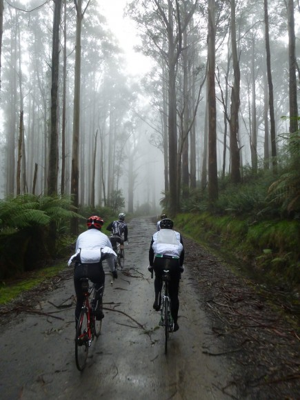 Riders in the mist.