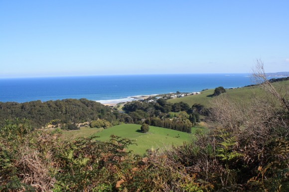 One of the many great views from the Skenes Creek Road climb.