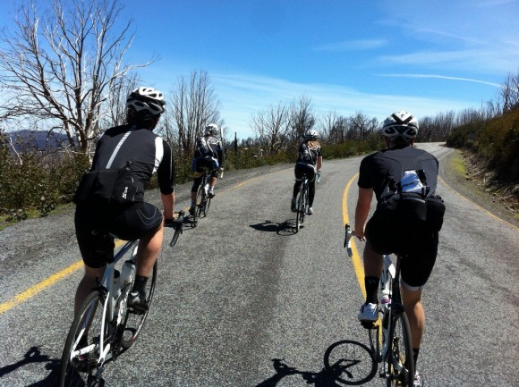 This is what cycling's all about: great weather, great roads and great company.