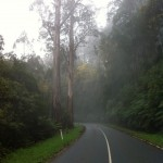 Mt. Donna Buang ride (07.10.12) 046
