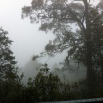 Mt. Donna Buang ride (07.10.12) 064