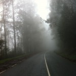 Mt. Donna Buang ride (07.10.12) 076