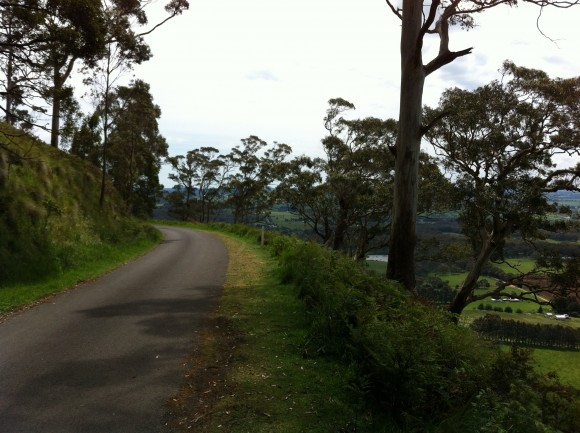 Great views on the Mt. Buninyong descent.