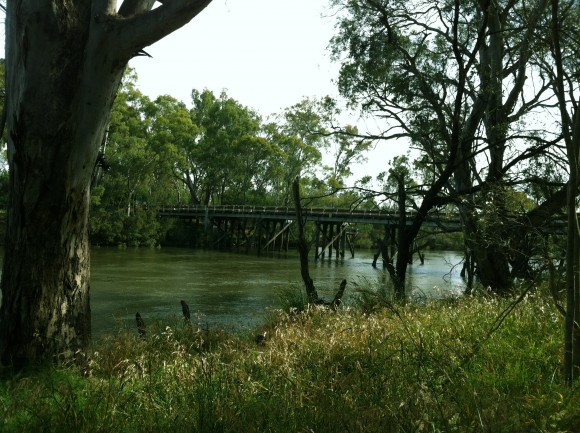 The Goulburn River.