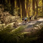 7 Peaks Domestique Series rides #10&11: Mt. Buller