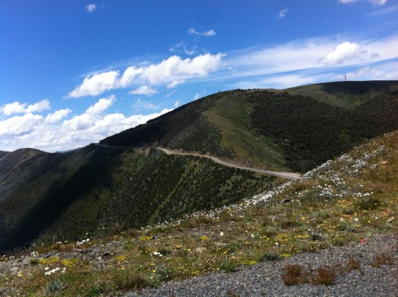 The final third of the Mt. Hotham climb is the hardest, but also the most scenic.