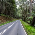 Guest post: The best (and worst) Dandenongs descents