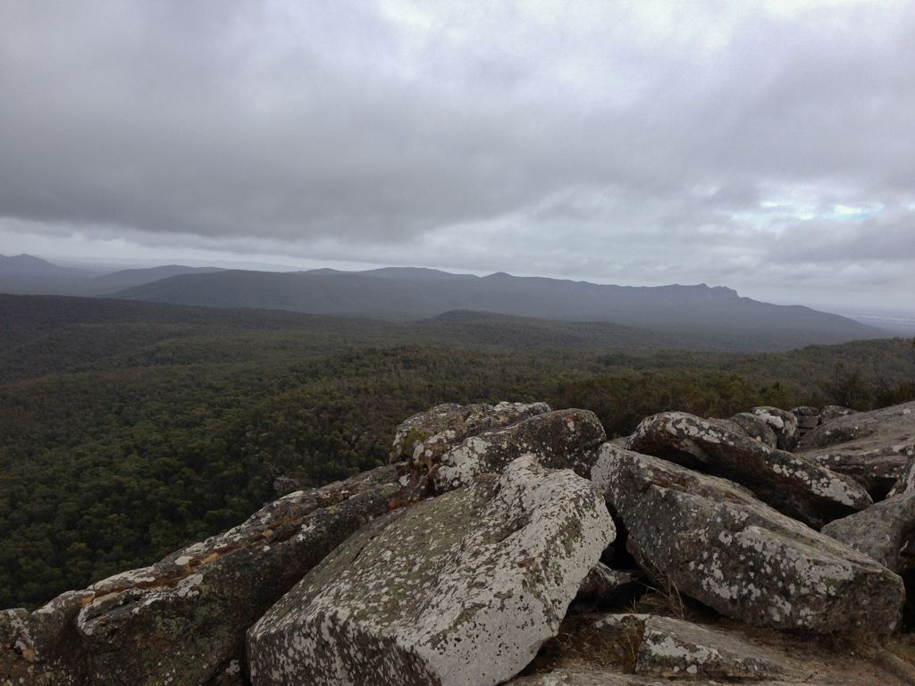 The view from Reeds Lookout.