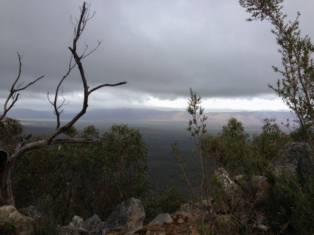 View from Reeds Lookout.
