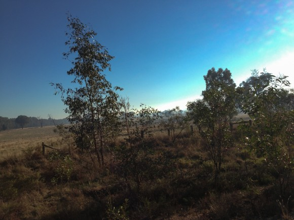 It was a stunning morning for a ride, even if it was a little cold.