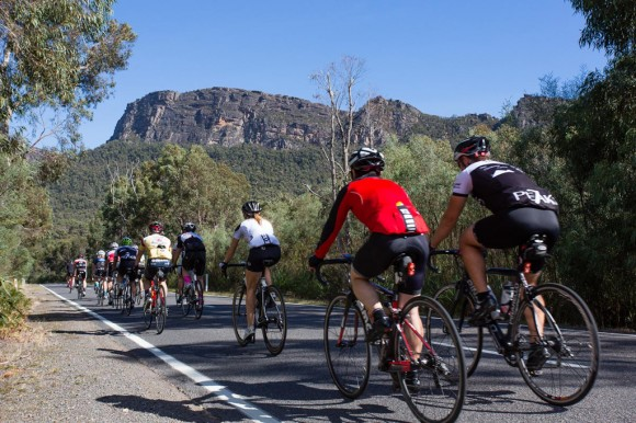 The bunch heads south on Grampians Road on the Saturday morning. (Image: Wil Gleeson)