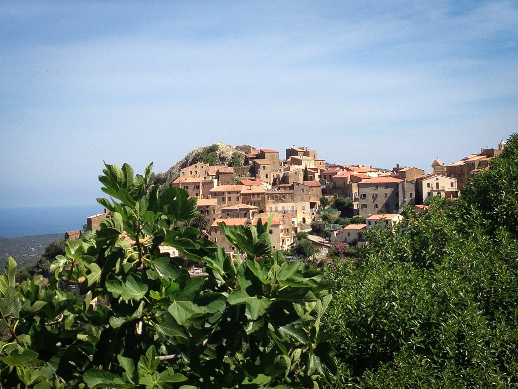 We saw so many of these little towns in Corsica, perched high above the valleys.