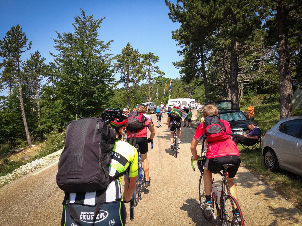 Climbing through the upper reaches of the forested section of Mont Ventoux on race day.