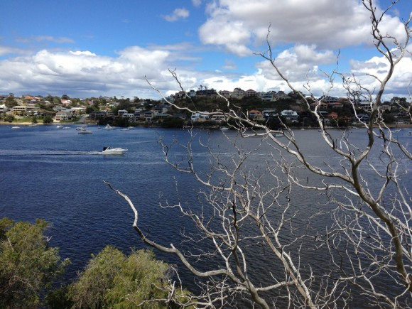 More views of the Swan River.