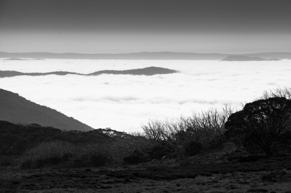 We passed through a cloud layer on the way down from Falls Creek to Omeo.
