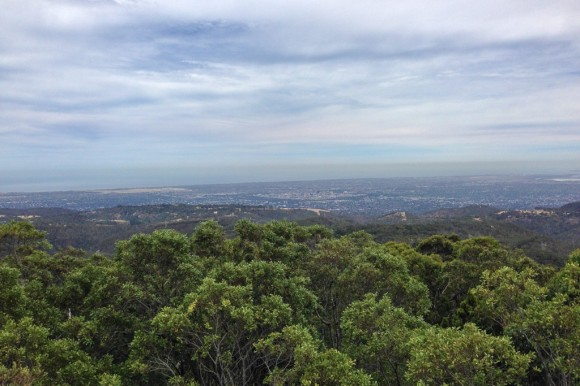 Looking down over Adelaide from Mt. Lofty.