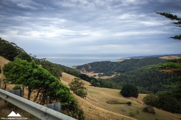 View from the Skenes Creek Road climb.