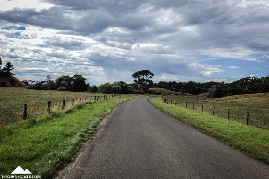 Looking down the Barham River Road.
