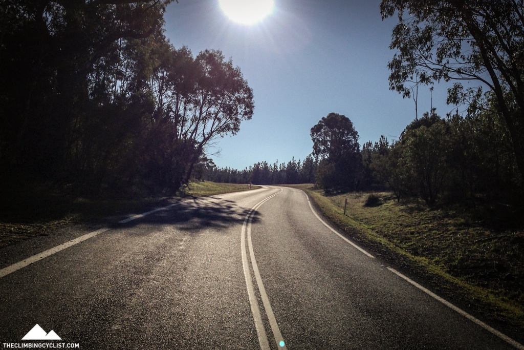 Early morning light on Brindabella Road, day three.