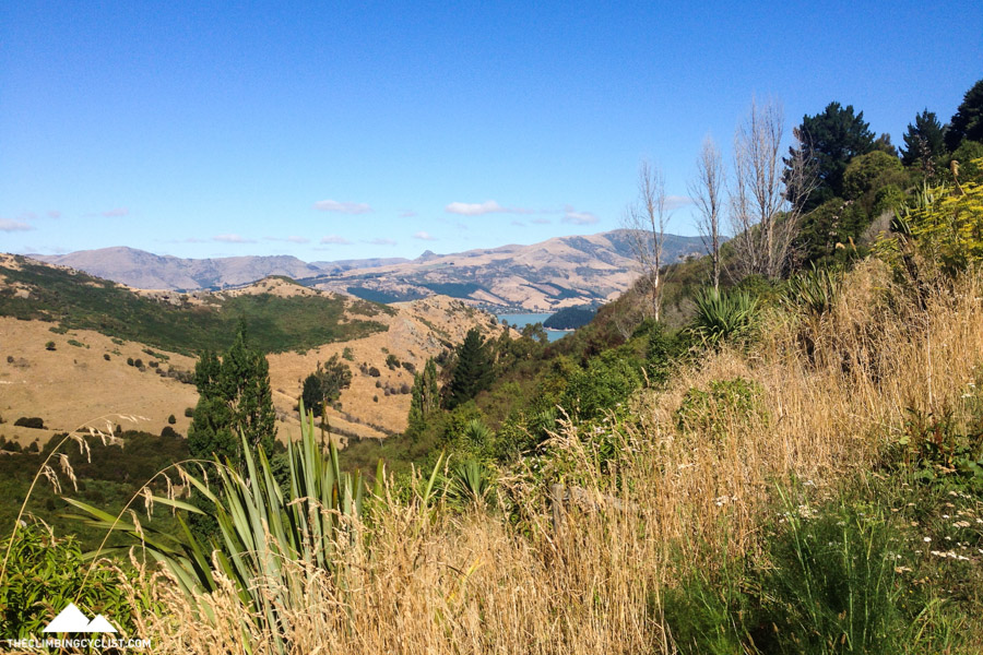 Looking back over the Lyttelton Harbour.
