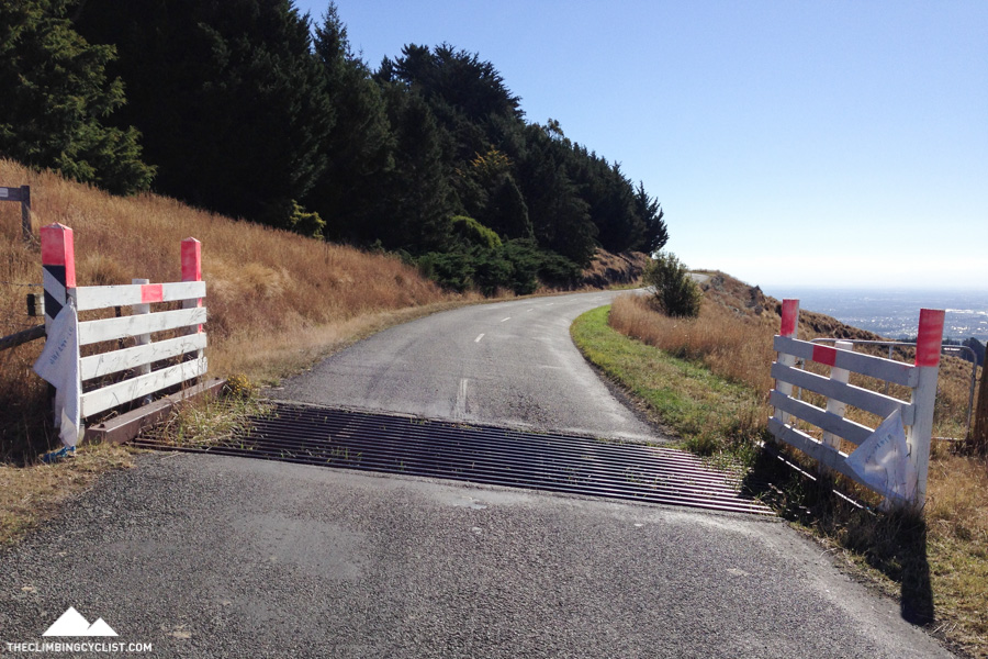 There are a few cattle grids along Summit Road to keep the livestock from moving into certain areas of the hills. They're totally rideable on a road bike, albeit a little bumpy.