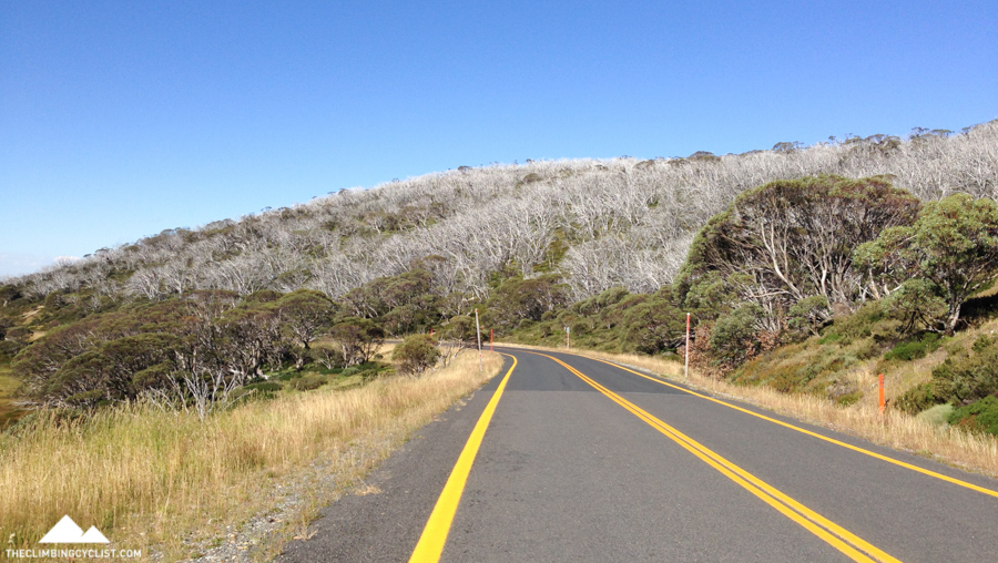 Riding back down from Charlotte Pass.