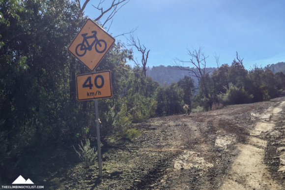 Do many cyclists really use this road?