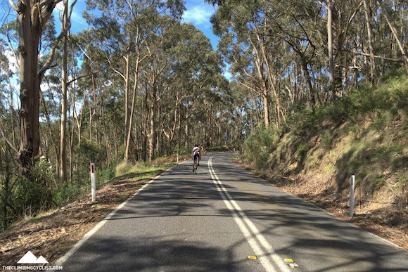 Rolling back into Lorne.