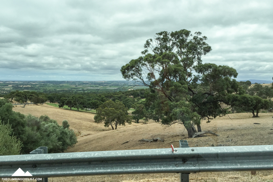 The view from the media car while climbing Willunga Hill. I'm still yet to climb this now-famous climb by bike.