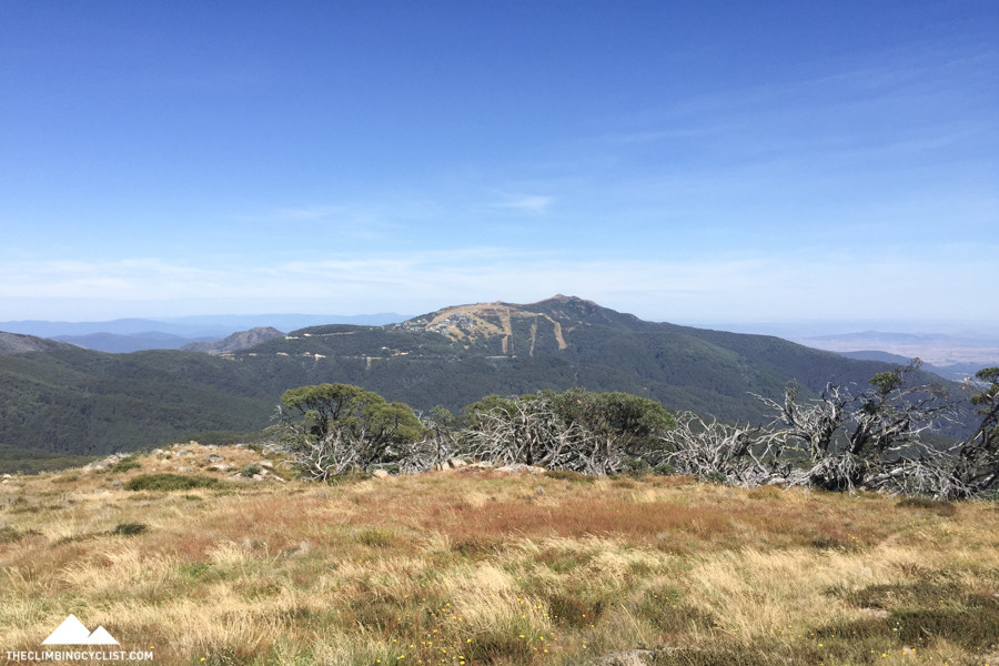 The view from Mt. Stirling, looking toward Mt. Buller.