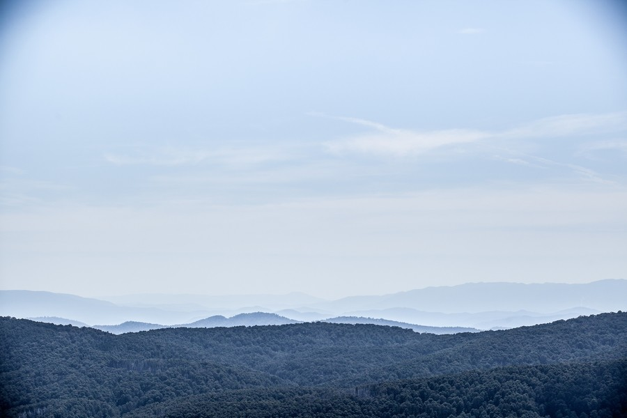 Domestique Mt Buller
