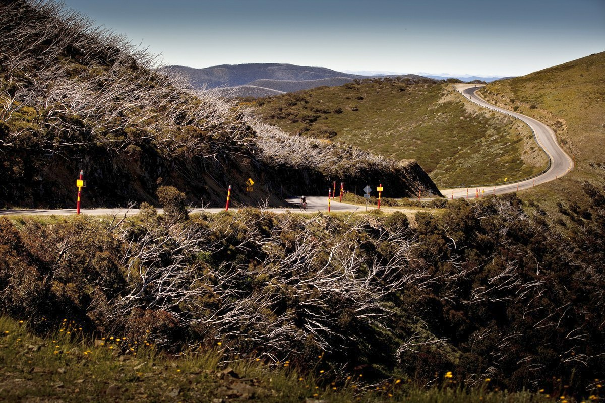 Mt. Hotham: definitely one of the more picturesque climbs in the state.